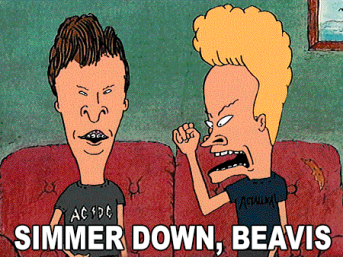 simmer-down-beavis